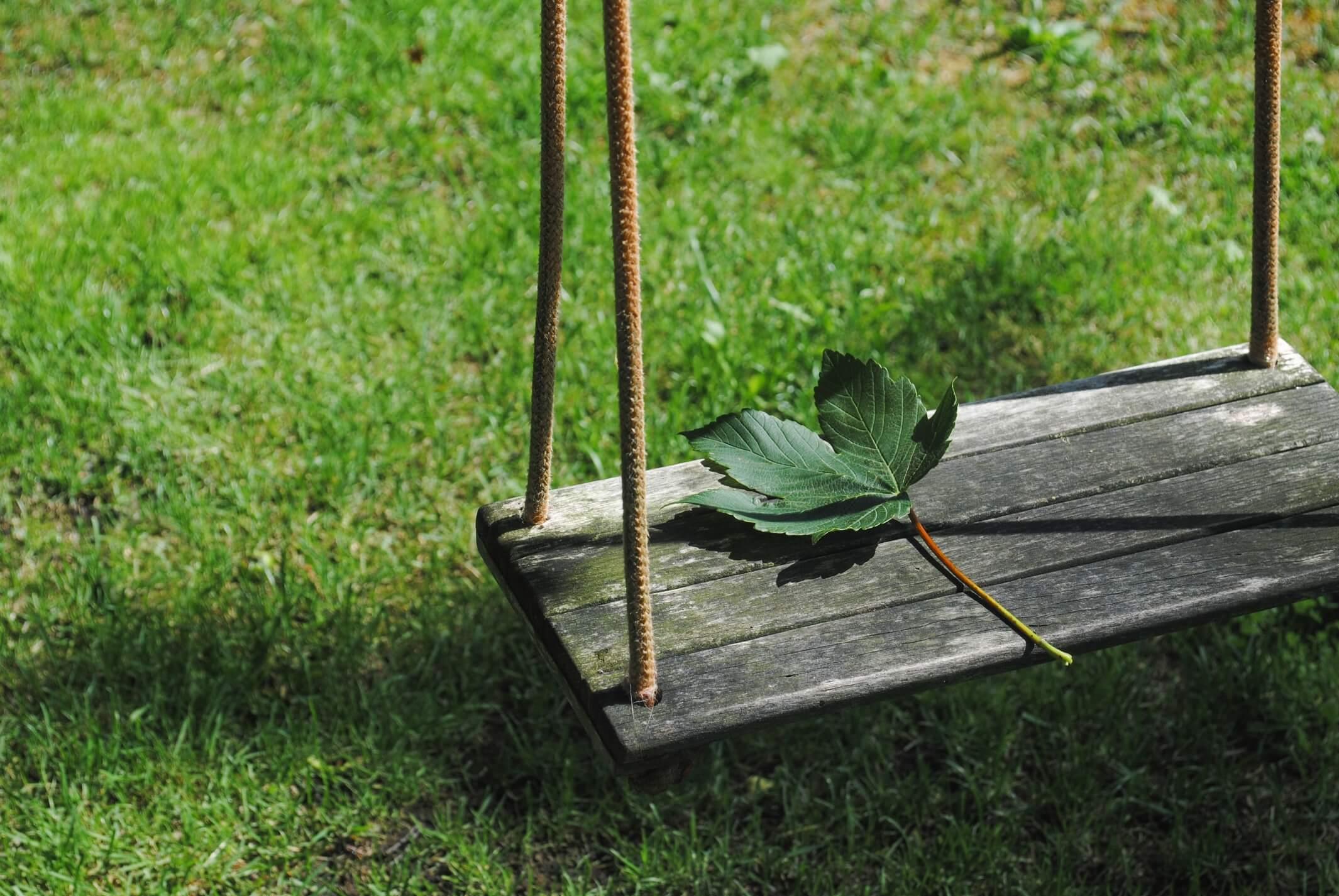 leaf on a swing